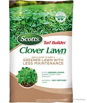 Scotts Turf Builder Clover Lawn