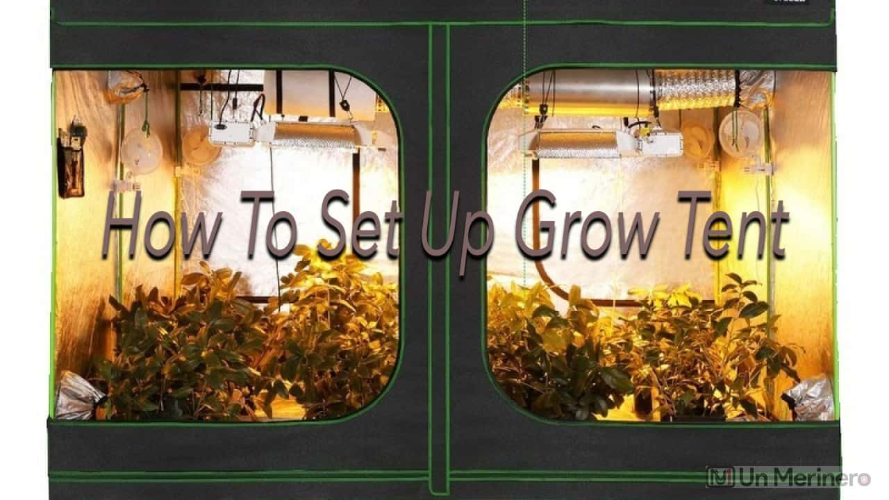 How to set up grow tent