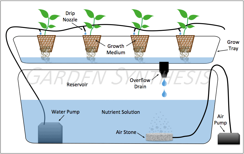 Hydroponic System Types - Diagram