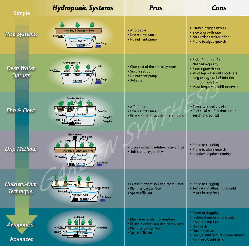 Pros and Cons of Hydroponic Systems