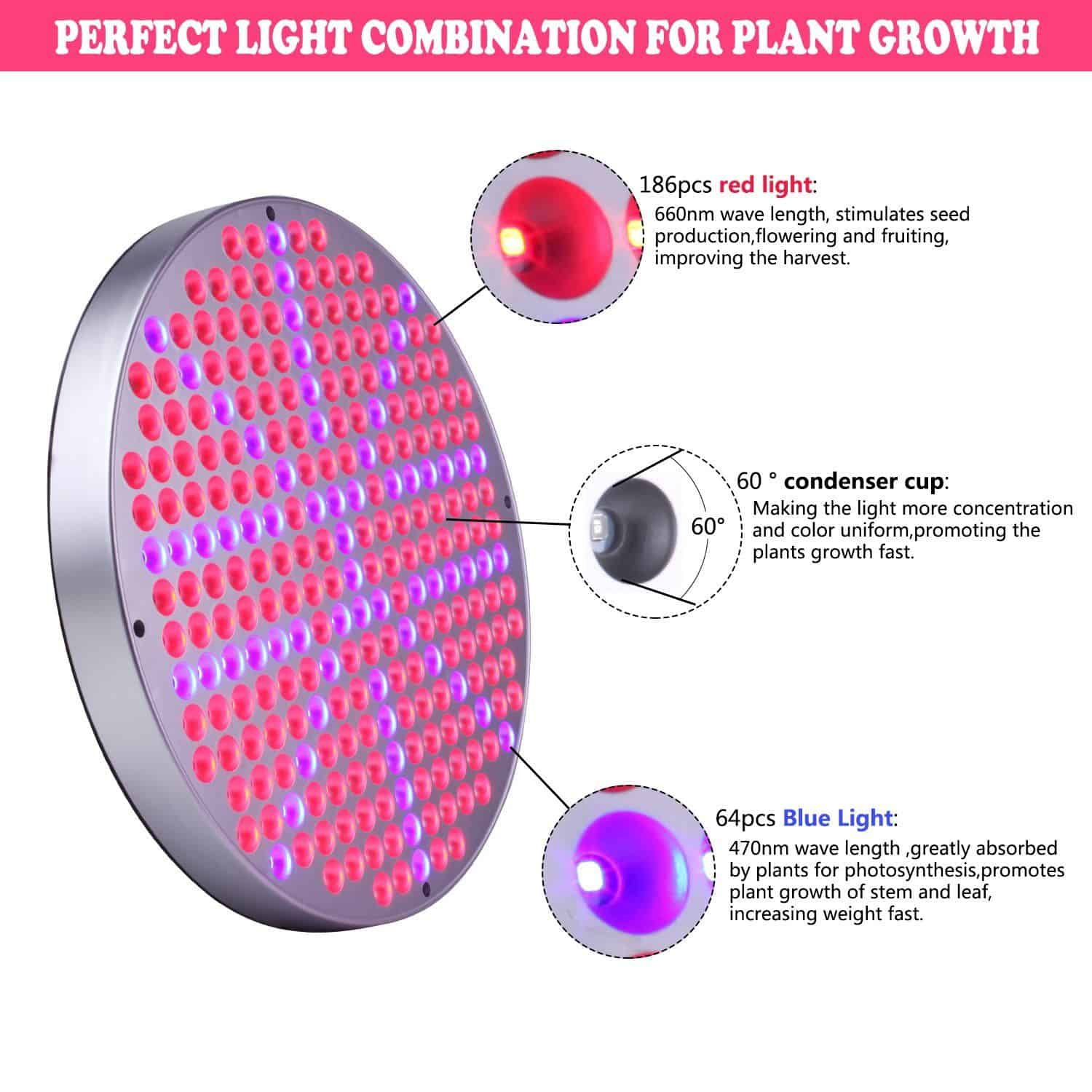 The best led light for 2x2 grow tent