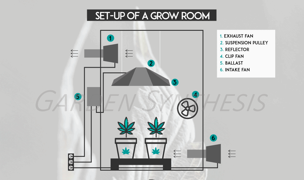 Why Should There Be Air Circulation In A Grow Tent