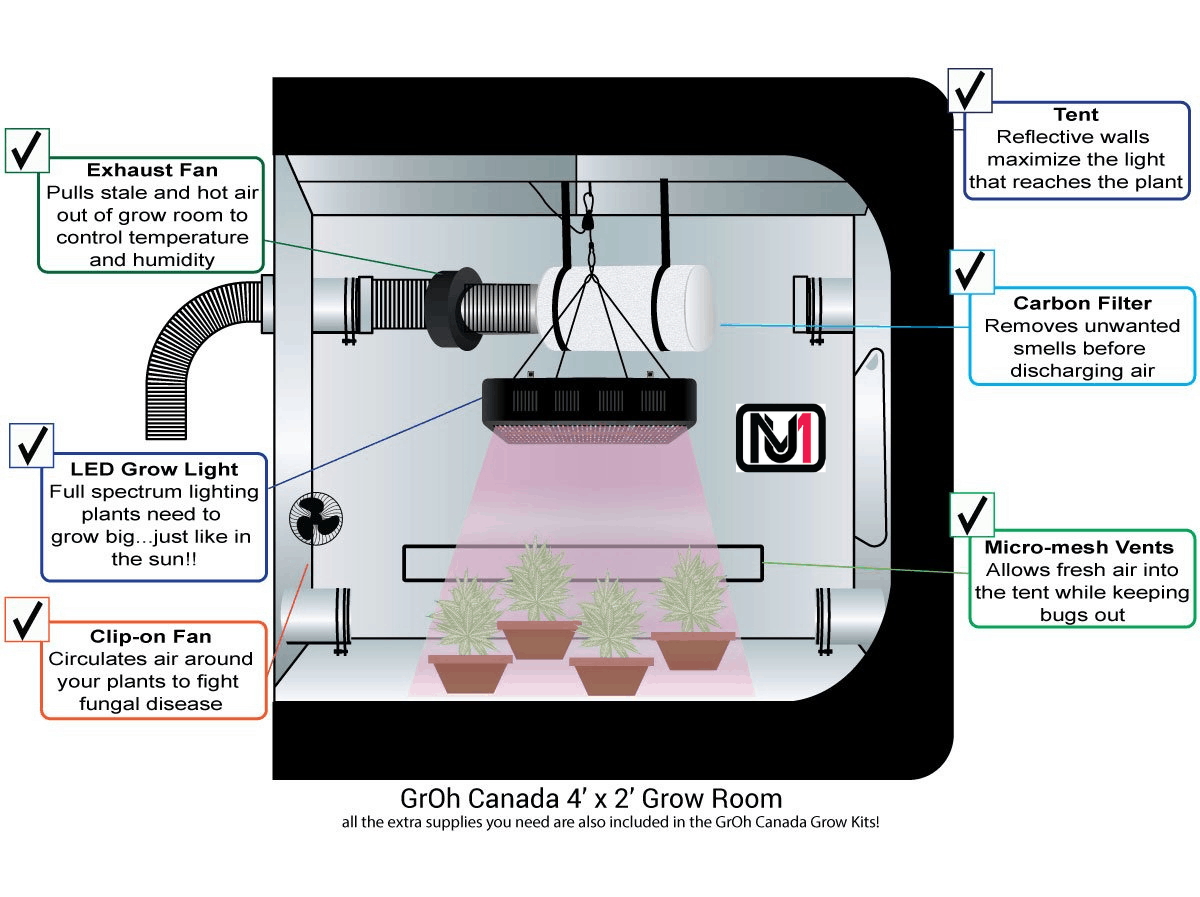 how to set up grow tent - infographics