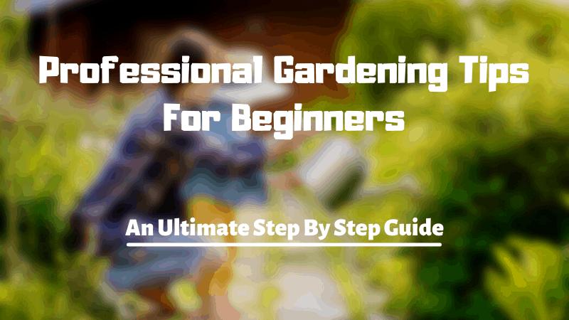 32 Pro Steps To Start Gardening - Gardening Tips For Beginners