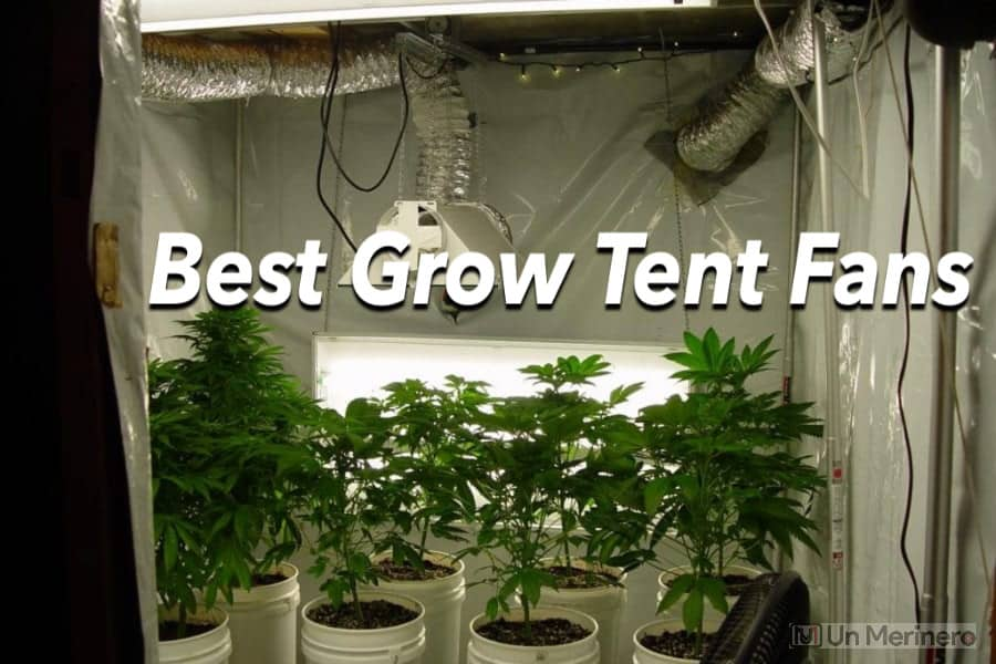 Best Grow Tent Fan - Best Exhaust fan for grow tent