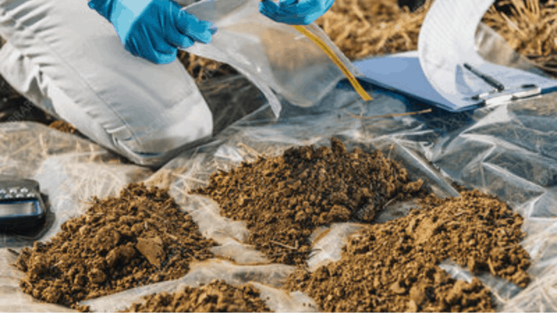 How to Choose The Right Type of Soil For Gardening