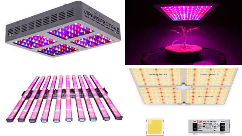 Types of LED Lights For Indoor Gardening