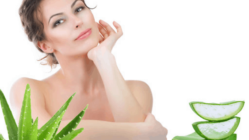 Why Having Aloe Vera In Your Home Is a Great Idea