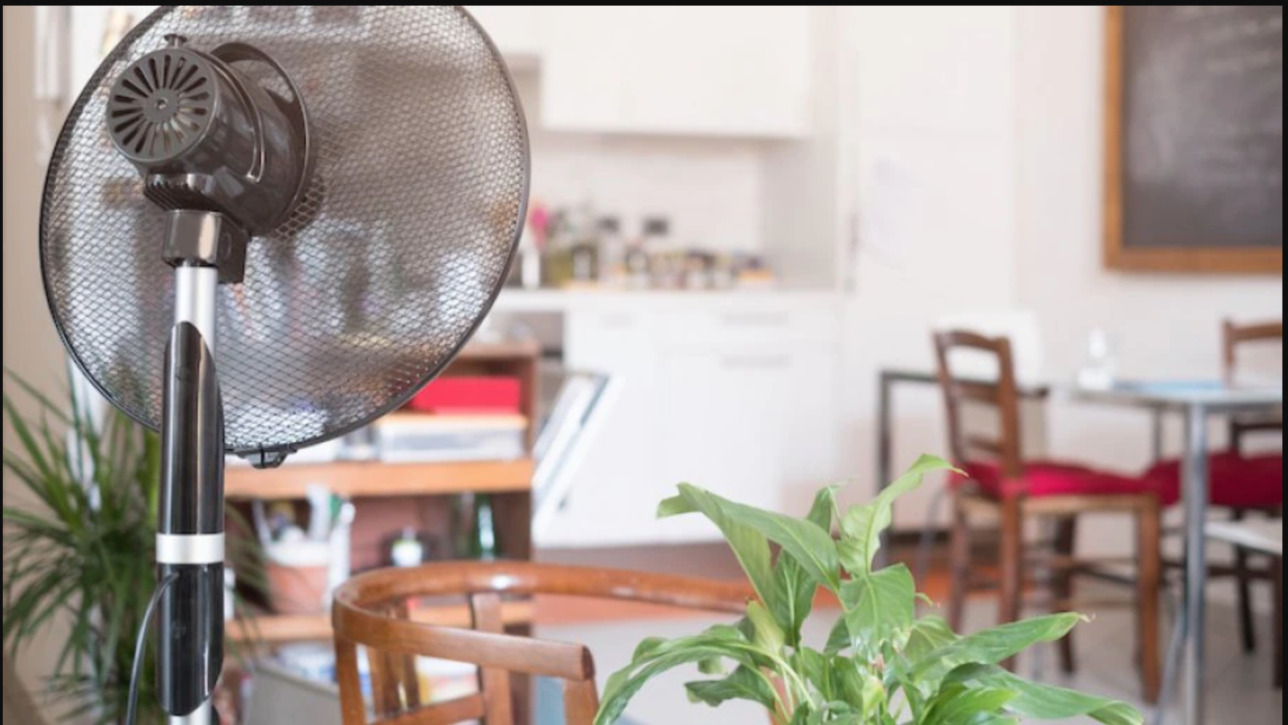 What Are The Facts That You Have To Be Careful About While Hanging an Oscillating Fan In Grow Tent?