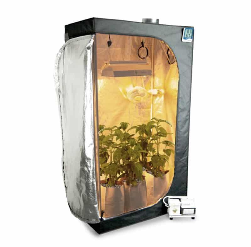 "Best 5x5 Hydroponic Grow Room - Growtent Garden 60""x60""x80"" Grow Tent"