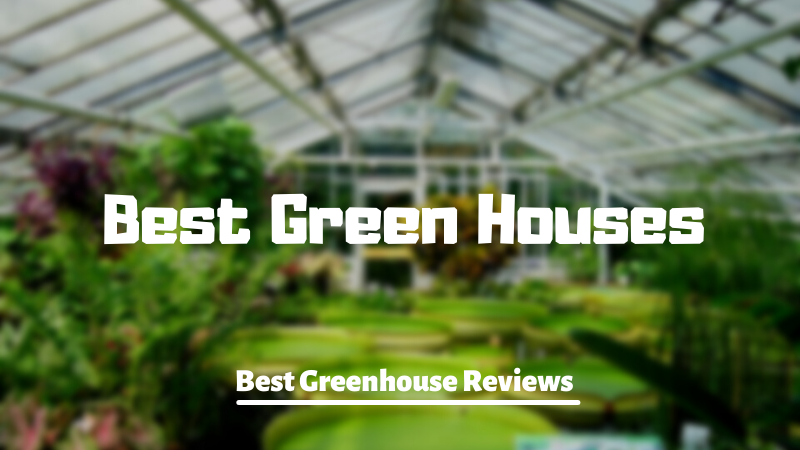 Best Green Houses - Best Greenhouse Reviews - Best Greenhouse setup in USA- Best Greenhouse setup in UK - Best Greenhouse setup in Germany - Best Greenhouse setup in Canada - Best Greenhouse setup in Singapore