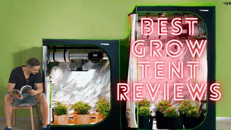 Best Grow Tent - Best Grow Room - Best grow tent for lawn - Best grow room for small lawn - Best Grow Tent Reviews
