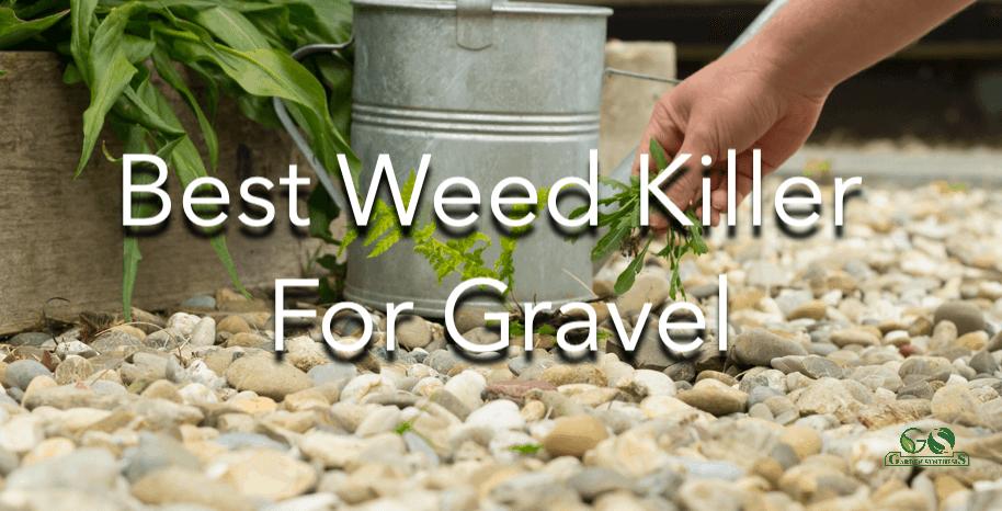 Best Weed Killer For Gravel
