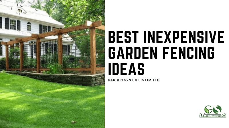 Best Inexpensive Garden Fencing Ideas
