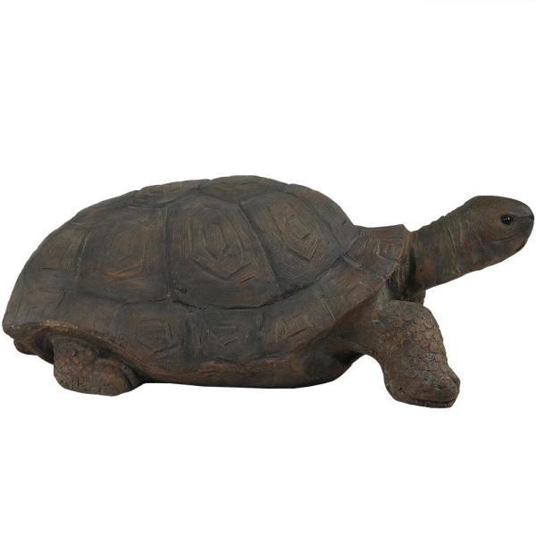 Best Todd Statue For Lawn - Sunnydaze Todd The Tortoise Garden Statue