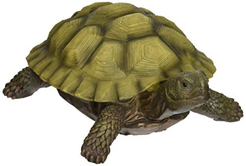 Best Toscano Statue For Lawn - Gilbert The Box Turtle Garden Statue