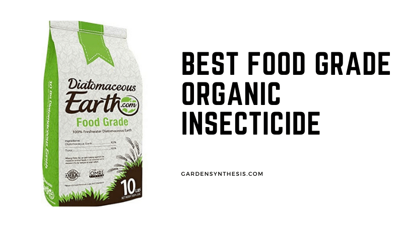 Diatomaceous Earth - Best Food Grade Organic Insecticide