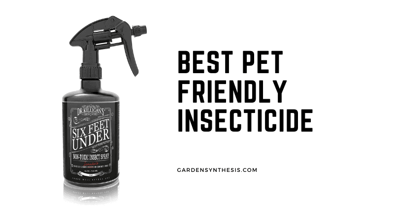 Dr Killigans Non-Toxic Insect Killer Spray - Best Pet Friendly Insecticide