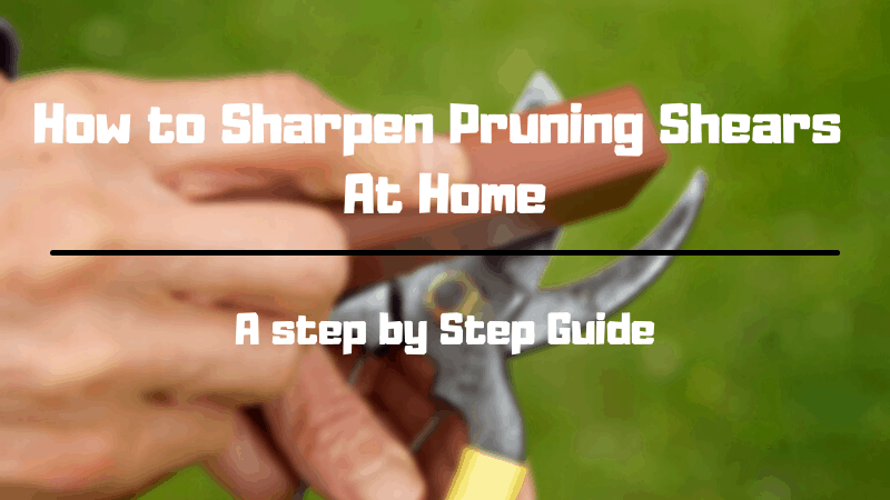 How to Sharpen Pruning Shears At Home - Best Article on How to Sharpen Pruning Shears At Home