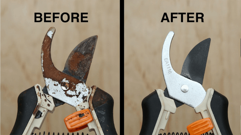 How to clean the rust of the Pruning Shear