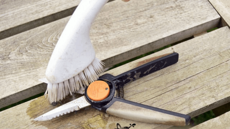 How to scrub the Pruning Shear