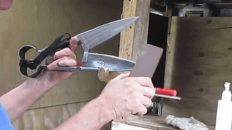 How to sharp the blade of the pruning shear