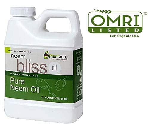 Omri Bliss Pure Cold Pressed Neem Oil - Best agricultural neem oil to kill bugs
