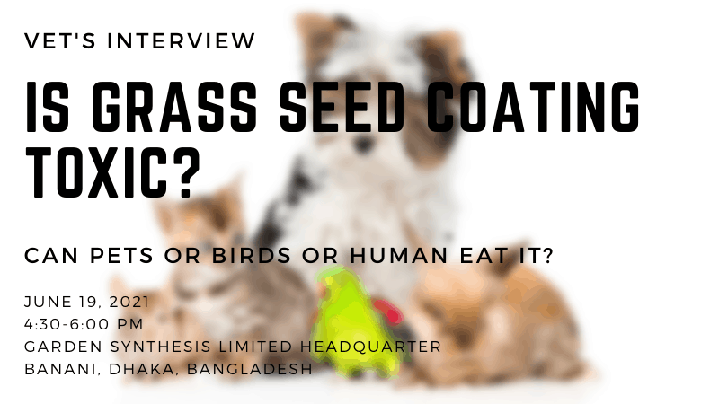 Is Grass Seed Coating Toxic - Can Pets or Birds or Human Eat It