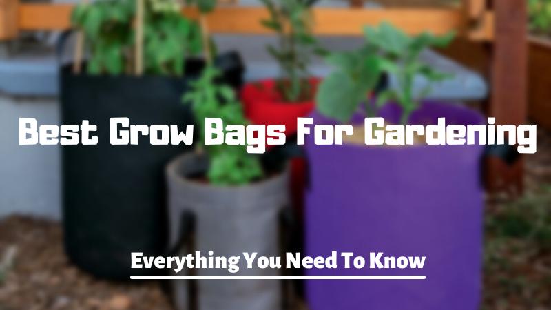 Best Grow Bags For Gardening