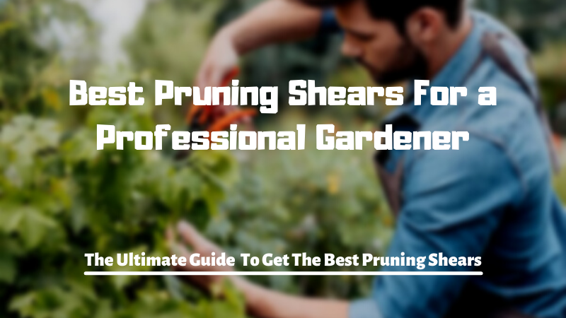 Best Pruning Shears For a Professional Gardener