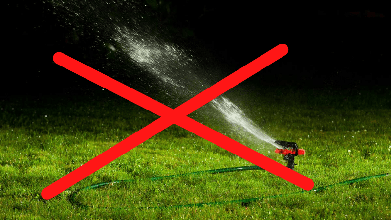 Can I water My Garden in Evening?