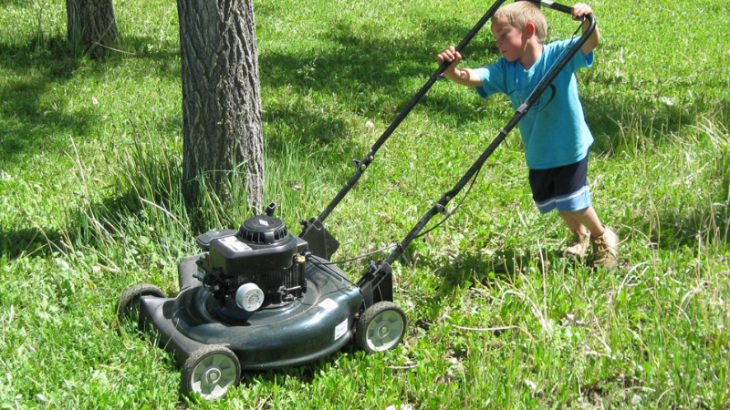 What Benefits Do Grass Clippings Provide If Returned To The Lawn?