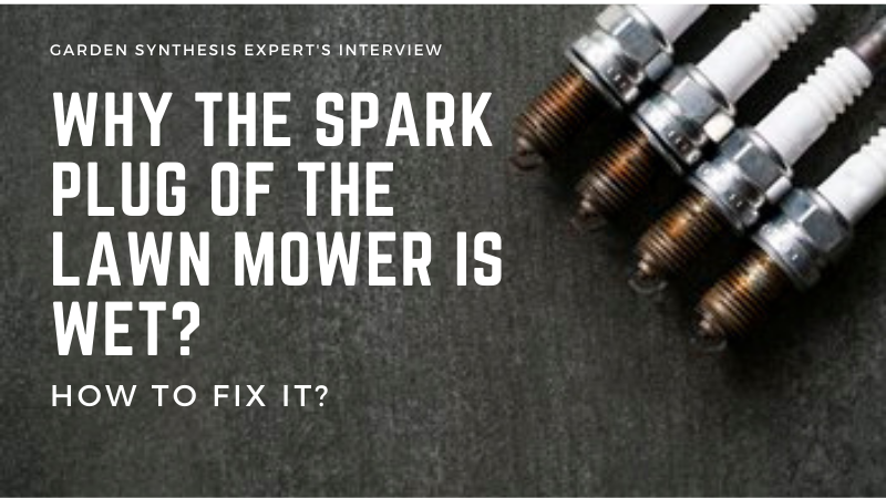 Why is lawn mower spark plug wet - How Do You Fix A Wet Spark Plug