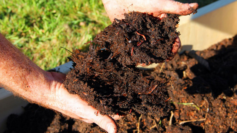 Amend The Soil With Compost