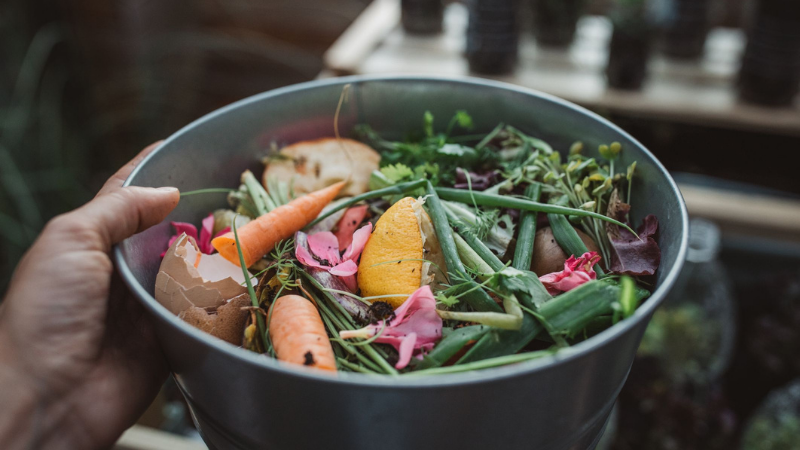 Collecting Food Waste From The Kitchen