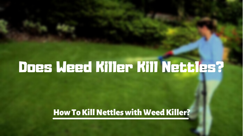 Does Weed Killer Kill Nettles - How To Kill Nettles with Weed Killer