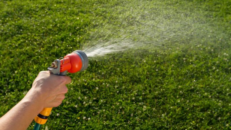 Regular Watering your lawn
