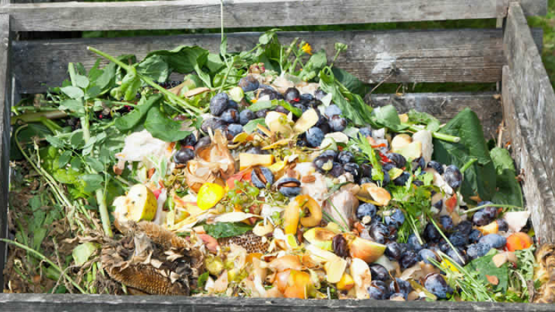 Kitchen Scraps Fertilizers