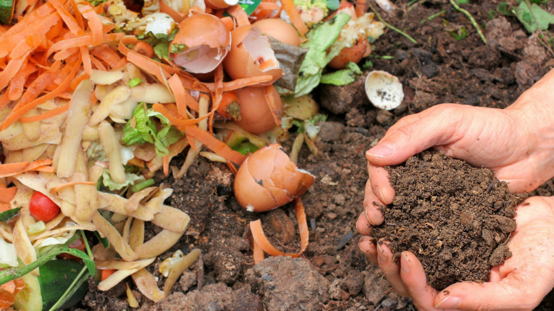 Making the Compost