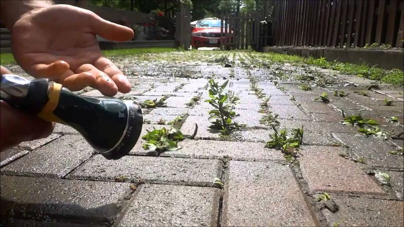 Spray The Weed killer Among Paving Stones