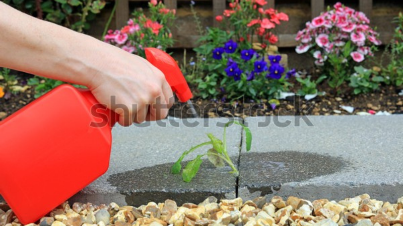 Spray The weed killer on Gravel And Stones