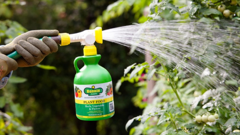What Is The Best Fertilizer For A Vegetable Garden?