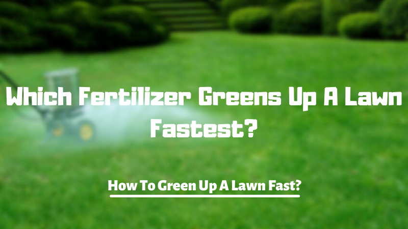 Which Fertilizer Greens Up A Lawn Fastest - How To Green Up A Lawn Fast