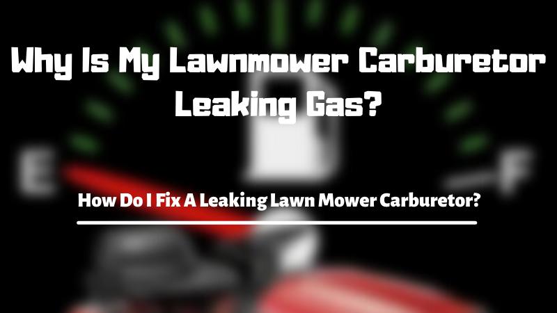 Why Is My Lawnmower Carburetor Leaking Gas - How Do I Fix A Leaking Lawn Mower Carburetor