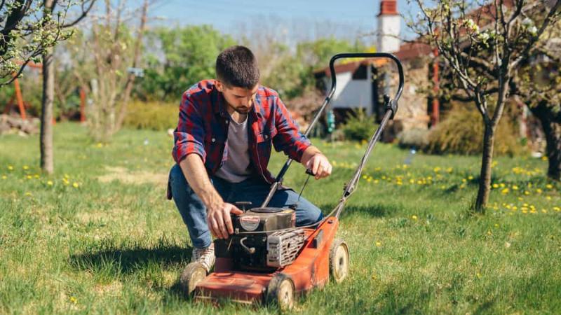 Why Is My Lawnmower Clicking - Lawnmower Power Line Disturbance
