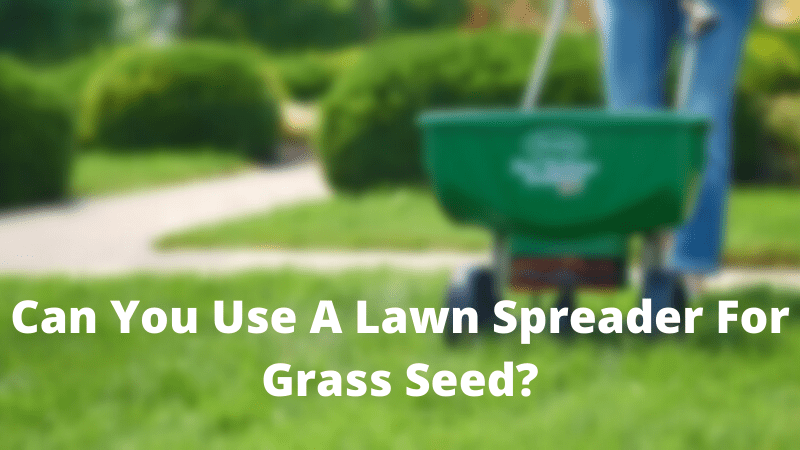 Can You Use A Lawn Spreader For Grass Seed?