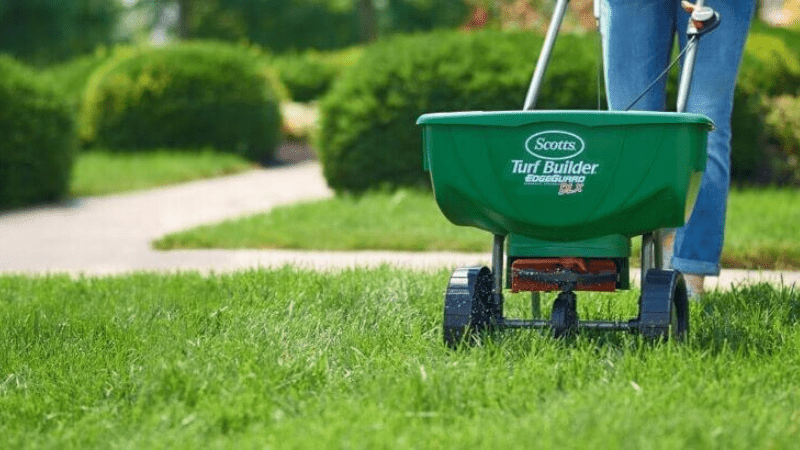 Can You Use Lawn Spreader For Grass Seed?