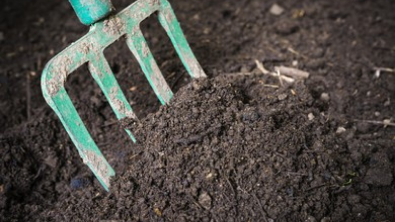Turning Up The Soil