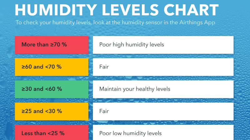 What Humidity Levels Should You Maintain?