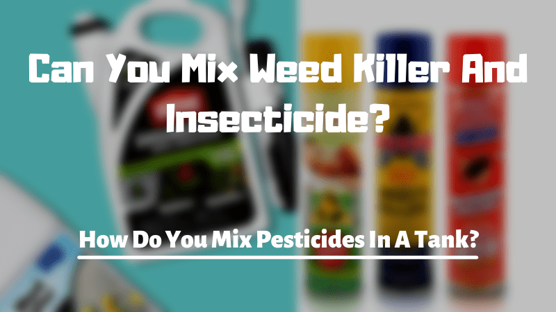 Can You Mix Weed Killer And Insecticide?